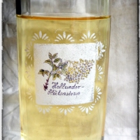 """The """"one and only"""" Holunderblütensirup-Rezept & Freebie"""