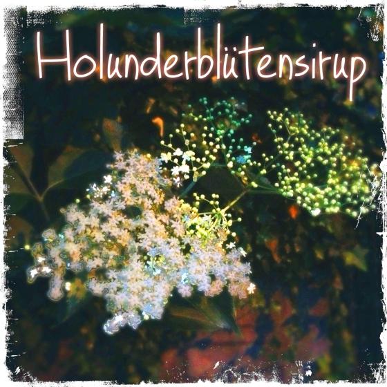 hollersirup_bearbeitet-1