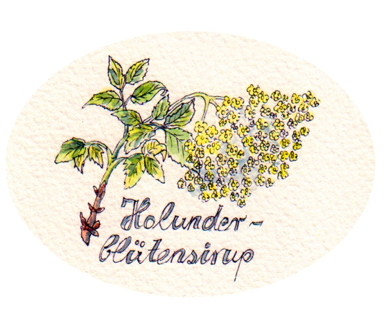 Hollunderblütensirup Einzeln_bearbeitet-1